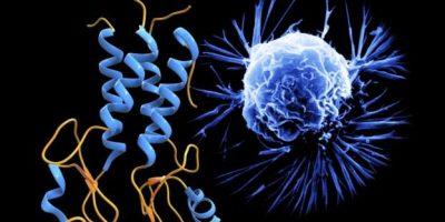 كشف أسرار تكون السرطان في الجسم البشري بدراسة