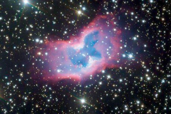 «فراشة فضائية» يتم تصويرها للمرة الأولى بتفاصيل مذهلة