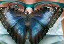 طيري طيري يافراشه الى«حديقة الفراشات» في ألمانيا