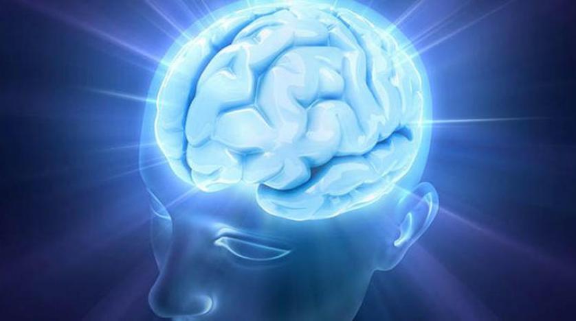 ذاكرة الإنسان تعطي الأولوية للأطعمة ذات السعرات العالية وموجات دماغية تساعد في العثور على أشياء مفقودة