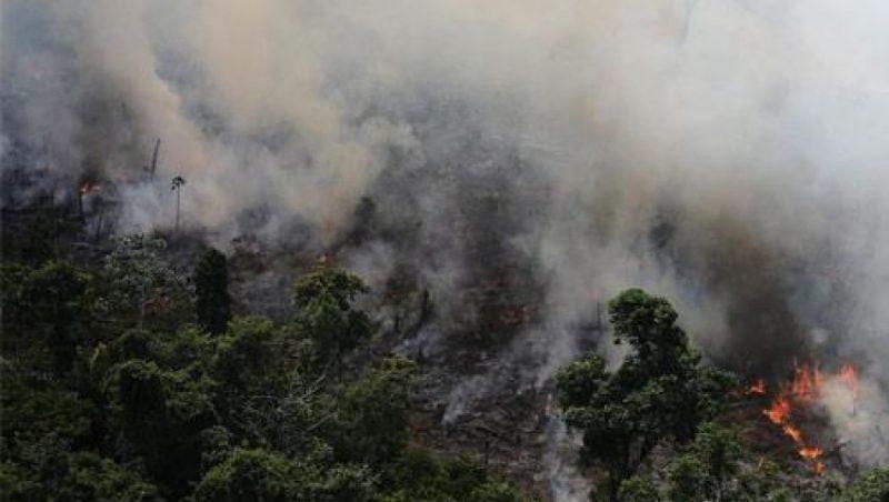 سوريا… إخماد حرائق الغابات والسفارة الأمريكية تتضامن مع المتضرّرين