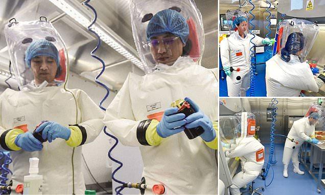 """صحف:هل صنع علماء صينيون فيروس «كورونا» معملياً؟ خبيران يزعمان امتلاك «دليل"""""""