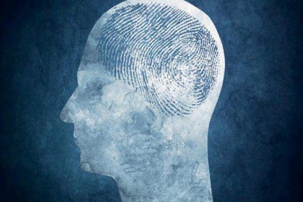 مثل الأصابع… لكل شخص «بصمة دماغ»