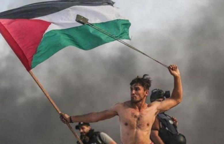 ديانا بوتو:حصار أكبر عدد من الفلسطينيين في أصغر مساحة ممكنة.. كيف تعيد إسرائيل إنتاج الاستعمار؟والطبيعة تسخر من الخطة