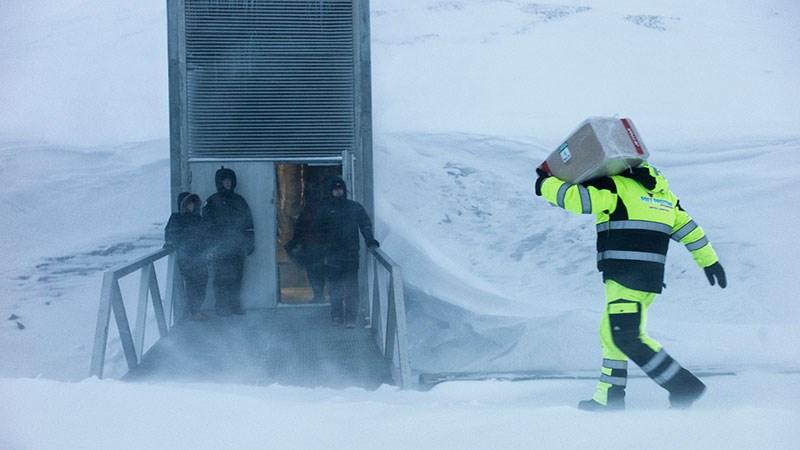 قبو جديد يقاوم الماء لحفظ مليون عينة لـ60 ألف نوع من المحاصيل في القطب الشمالي