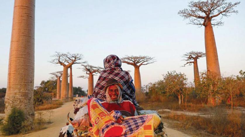مدغشقر مهددة بالانقسام إلى جزر أصغر