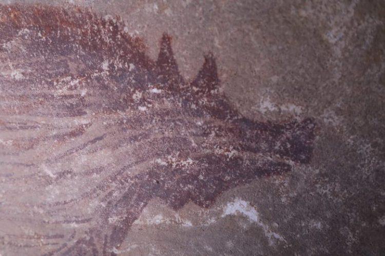 اكتشاف أقدم رسمة لحيوان على جدار كهف في إندونيسيا