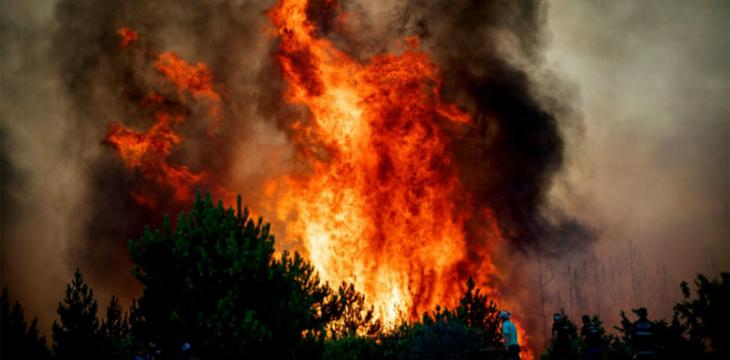 صحف:استعدوا للاحتباس الحراري وقتلى وجرحى في حرائق غابات بالجزائر، والصحة العالمية تسعى لمنع انتشار فيروس ماربورغ القاتل في غينيا
