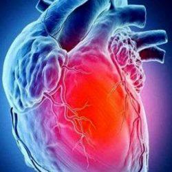 قلوب البشر تنبض بشكل متزامن عند تعرضها لنفس الحدث