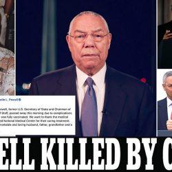 كورونا تقتل كولن باول المروج لحرب العراق رغم تلقيه جميع اللقاحات.. واللجنة الدستورية السورية تستأنف مباحثاتها في جنيف